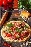 Pizza stockfotografie
