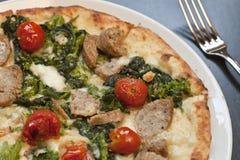 Pizza al forno di paesana Fotografia Stock Libera da Diritti