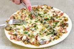Pizza, alimento, cogumelo, queijo, petisco, gourmet, pastelaria Imagem de Stock Royalty Free