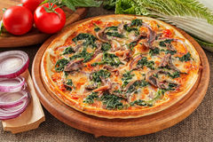 Pizza with anchovies Royalty Free Stock Photography