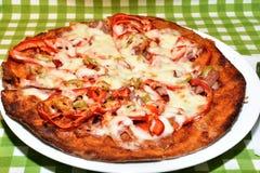 Pizza arrostita con le verdure e la pasta del grumo Fotografia Stock Libera da Diritti