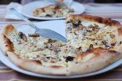 Pizza avec des champignons de fromage et de porcini Image libre de droits