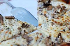 Pizza avec des champignons de fromage et de porcini Photos libres de droits