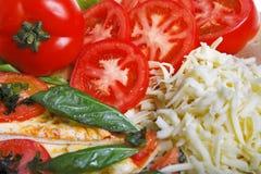 Pizza avec des ingrédients photographie stock libre de droits