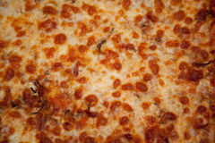Pizza in a baking tray Royalty Free Stock Image