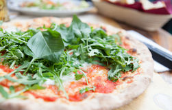Pizza with basil and rucola. Margherita pizza with basil leaves and rucola Royalty Free Stock Photos