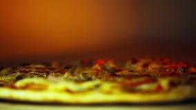 Pizza besprüht mit italienischen Gewürzen stock footage