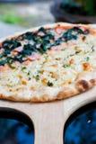 Pizza blanca y pizza de Queso Gorgonzola Fotografía de archivo