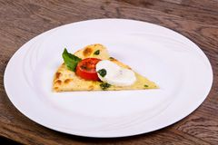 Pizza Caprese with basil. And mozarella stock image