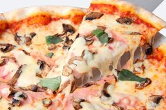 Pizza with champignons and ham close up Royalty Free Stock Image