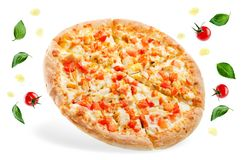 Pizza with cheese, chicken and fresh tomato slices royalty free stock images