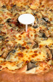 Pizza chicken mushroom cheese Stock Photo