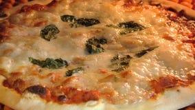 Pizza circulaire dans le four photo libre de droits