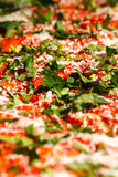 Pizza Close-up. A close-up look at a pizza before it goes into the oven stock photo