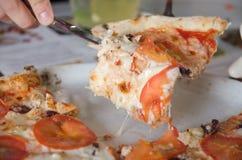 Pizza com tomate Imagens de Stock
