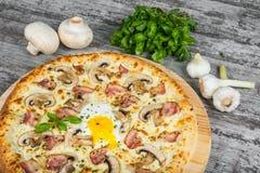Pizza con bacon, i funghi e l'uovo, con i rosmarini e le spezie fotografia stock libera da diritti