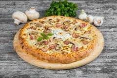 Pizza con bacon, i funghi e l'uovo, con i rosmarini e le spezie fotografie stock libere da diritti