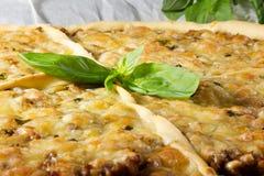 Pizza con carne Immagini Stock Libere da Diritti