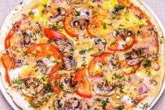 Pizza con el jamón, las setas, el tomate y el huevo Imagen de archivo libre de regalías