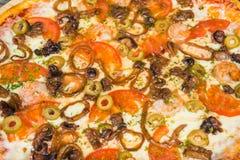 Pizza con frutti di mare, con i rosmarini e le spezie su un fondo di legno leggero fotografie stock libere da diritti