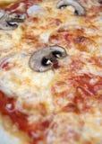 Pizza con i funghi Immagine Stock