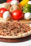 Pizza con i funghi ed il formaggio Immagini Stock