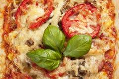 Pizza con i pomodori Immagine Stock