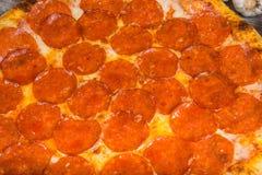 Pizza con il salame delle merguez con i rosmarini e le spezie su un fondo leggero fotografie stock libere da diritti