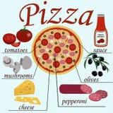 Pizza con il suo Ingridients Fotografie Stock Libere da Diritti