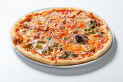 Pizza con la cipolla, il prosciutto, il formaggio ed il pomodoro Priorità bassa bianca Fotografia Stock Libera da Diritti
