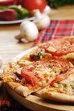 Pizza con las setas foto de archivo libre de regalías