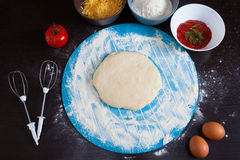 Pizza cooking ingredients. Raw pizza ingredients Stock Photos