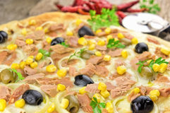 Pizza with corn, tuna, onions , olives Stock Photos