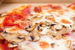 Pizza de champignon de couche Photo stock