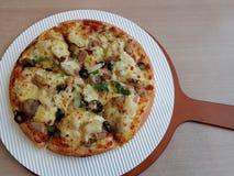 Pizza de Eslovênia Imagem de Stock