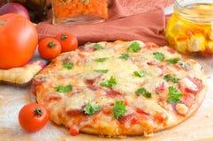 Pizza de fromage et de tomate images libres de droits