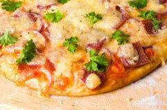 Pizza de fromage et de tomate image libre de droits