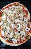 Pizza de légume et de poulet Photographie stock