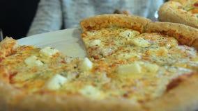 Pizza de queijo apetitosa video estoque