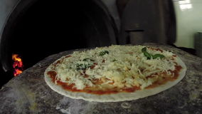 Pizza del cocinero que cocina la pizza