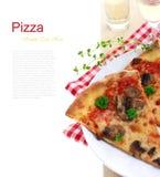 Pizza del fungo immagine stock libera da diritti