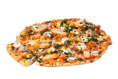 Pizza del pollo Imagen de archivo
