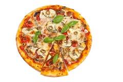 Pizza del vegetariano de la verdura y de la seta imagen de archivo libre de regalías