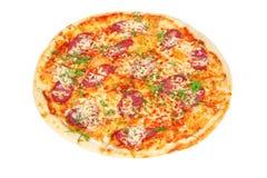 Pizza deliciosa com salami e queijo Imagem de Stock