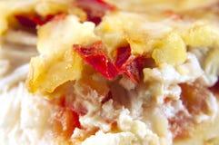 Pizza di formaggio con i pomodori Fotografia Stock Libera da Diritti