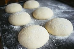 Pizza dough rolls on baking tray. Pizza mass dough rolls on baking tray royalty free stock image