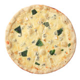 Pizza four cheese Royalty Free Stock Image