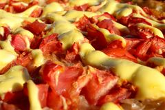 Pizza fresca com tomates Fotografia de Stock