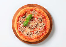 Pizza Fungi Stock Images