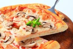 Pizza Fungi Royalty Free Stock Photography
